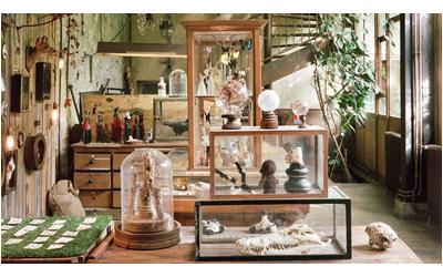 קול קורא : 'חדר פלאות' / 'Cabinet of Curiosities'